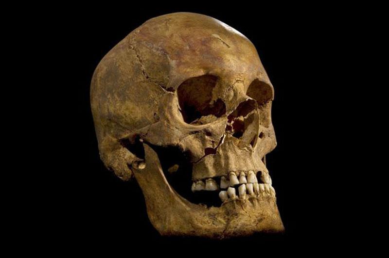 Encuentran el esqueleto de Ricardo III de Inglaterra