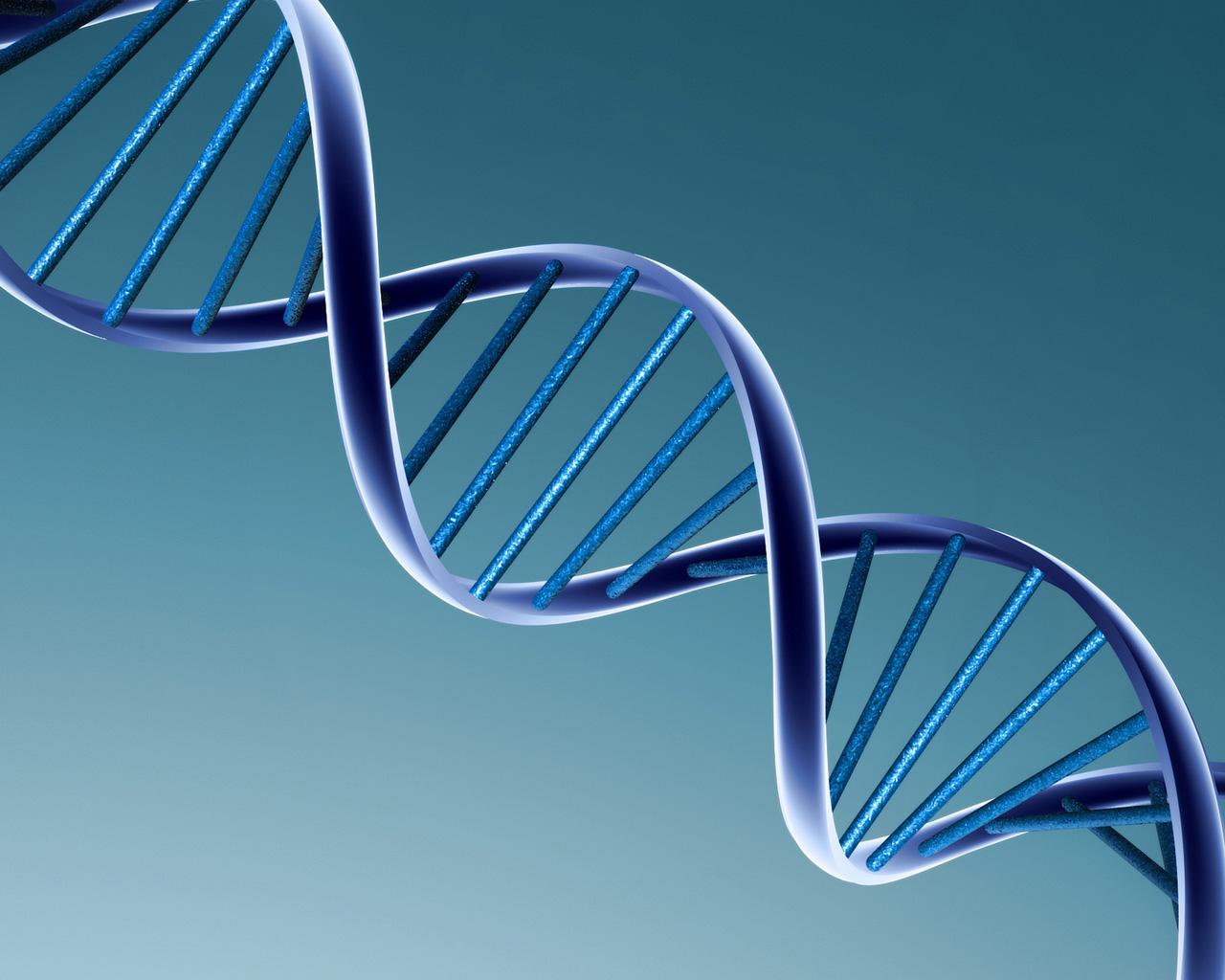 Reino Unido sopesa la creación de bebés de 3 personas para combatir las enfermedades genéticas