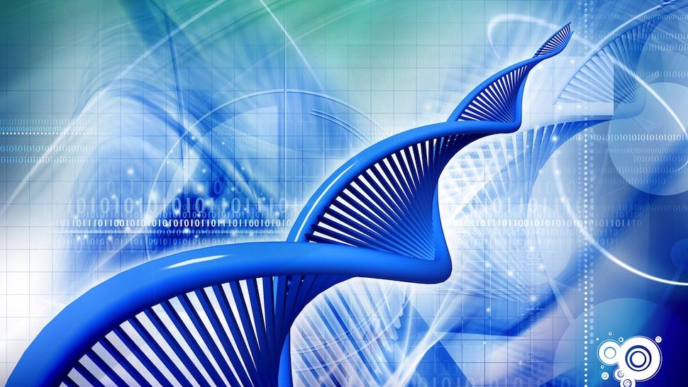 Desarrollan el primer transistor biológico
