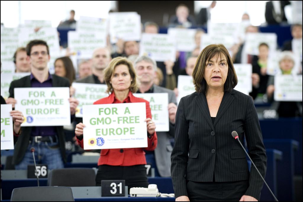 European Parliament (Flickr)