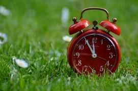 relojes biológicos